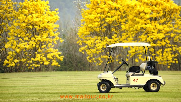 로얄 치앙마이 골프 & 리조트 10
