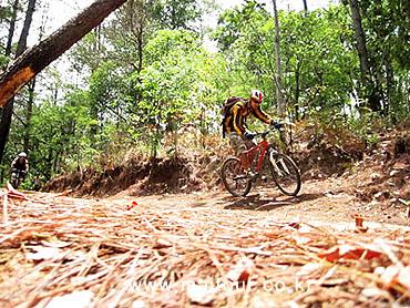 Mountain Biking 29