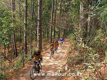 Mountain Biking 16