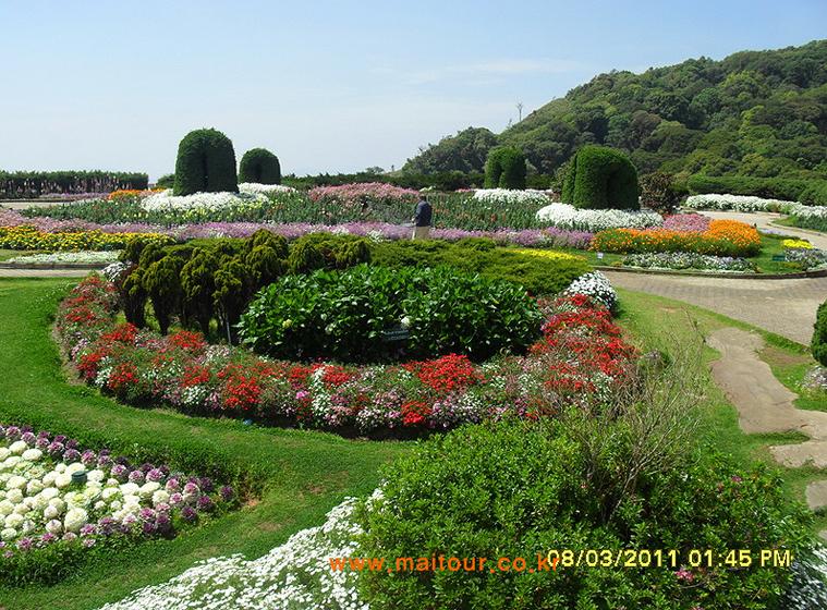 도이 인타논 국립공원 11