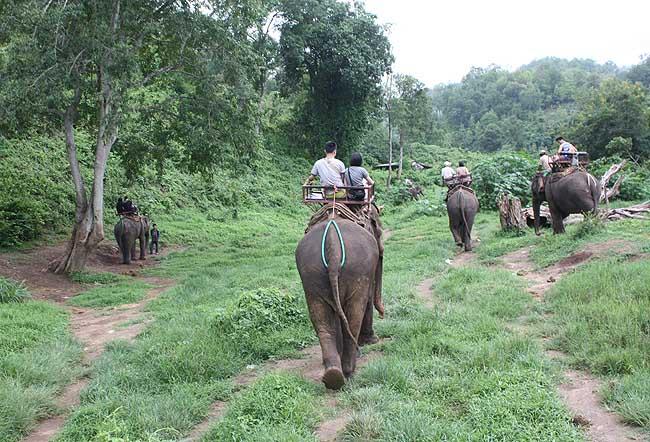 chiang mai Trekking 4