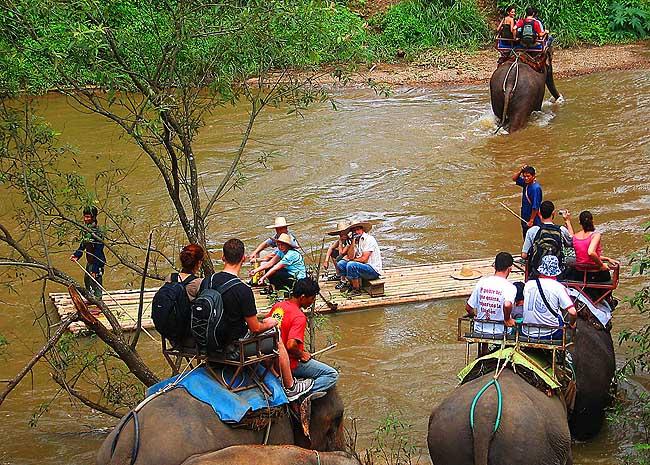 chiang mai Trekking 5