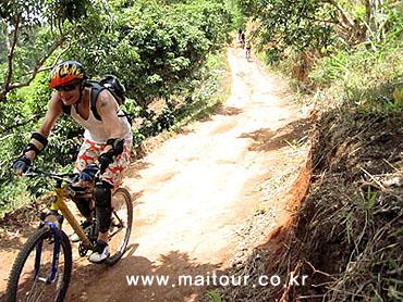 산악 자전거 트레킹