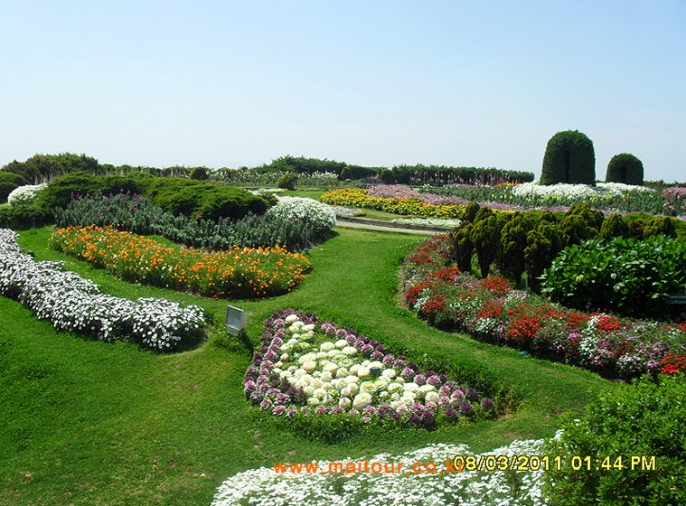 도이 인타논 국립공원 10