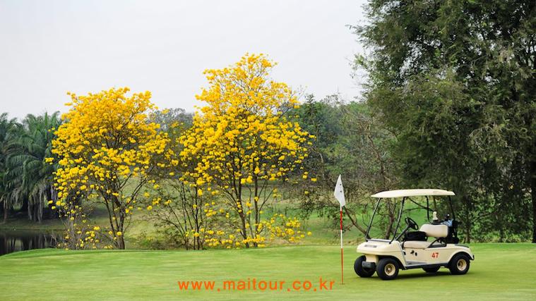 로얄 치앙마이 골프 & 리조트 23